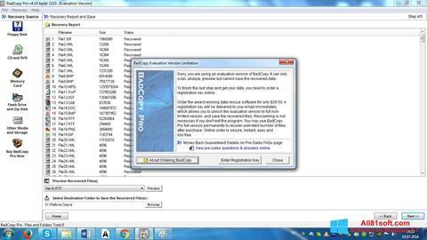 Screenshot BadCopy Pro per Windows 8.1