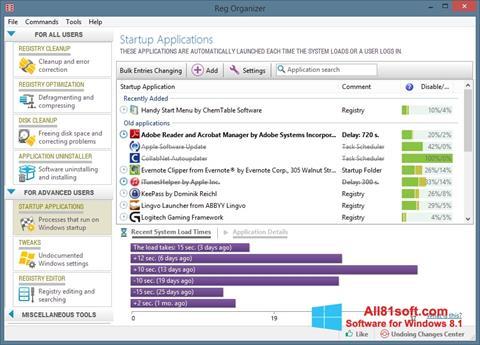 Screenshot Reg Organizer per Windows 8.1