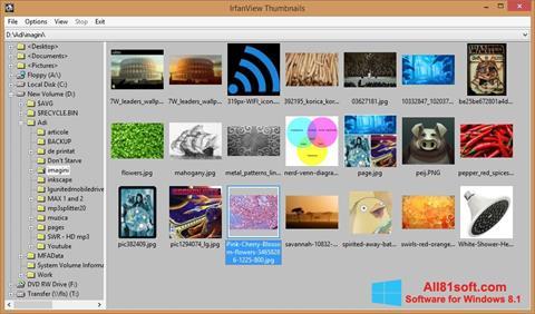 Screenshot IrfanView per Windows 8.1