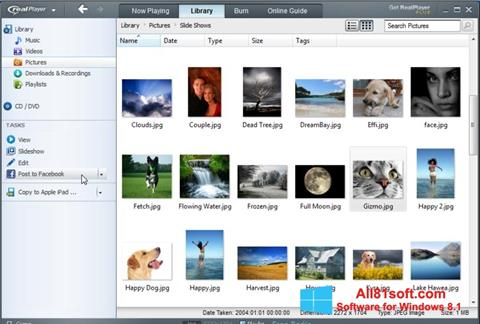 Screenshot RealPlayer per Windows 8.1
